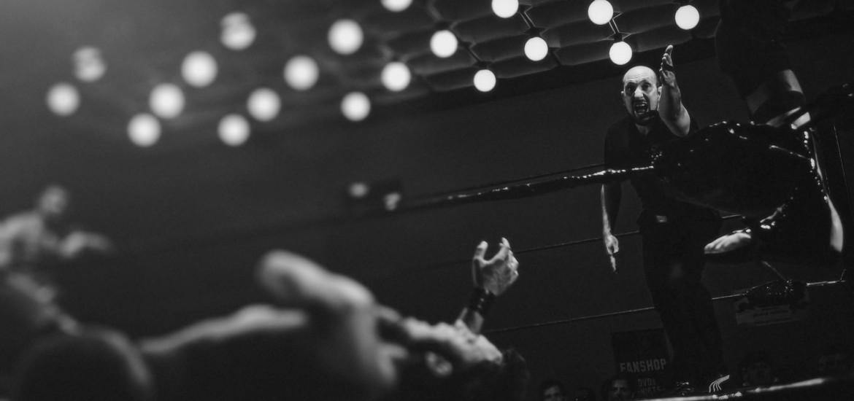 Boxer K.O.